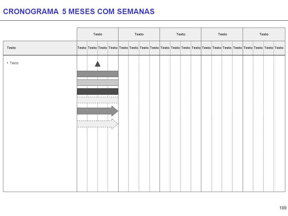 189 CRONOGRAMA 5 MESES COM SEMANAS Texto