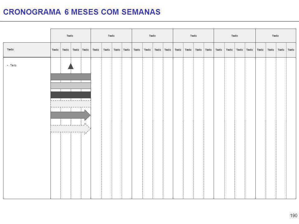 190 CRONOGRAMA 6 MESES COM SEMANAS Texto
