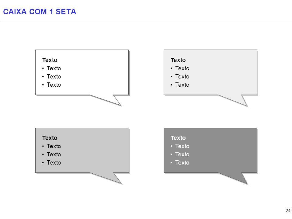 24 CAIXA COM 1 SETA Texto