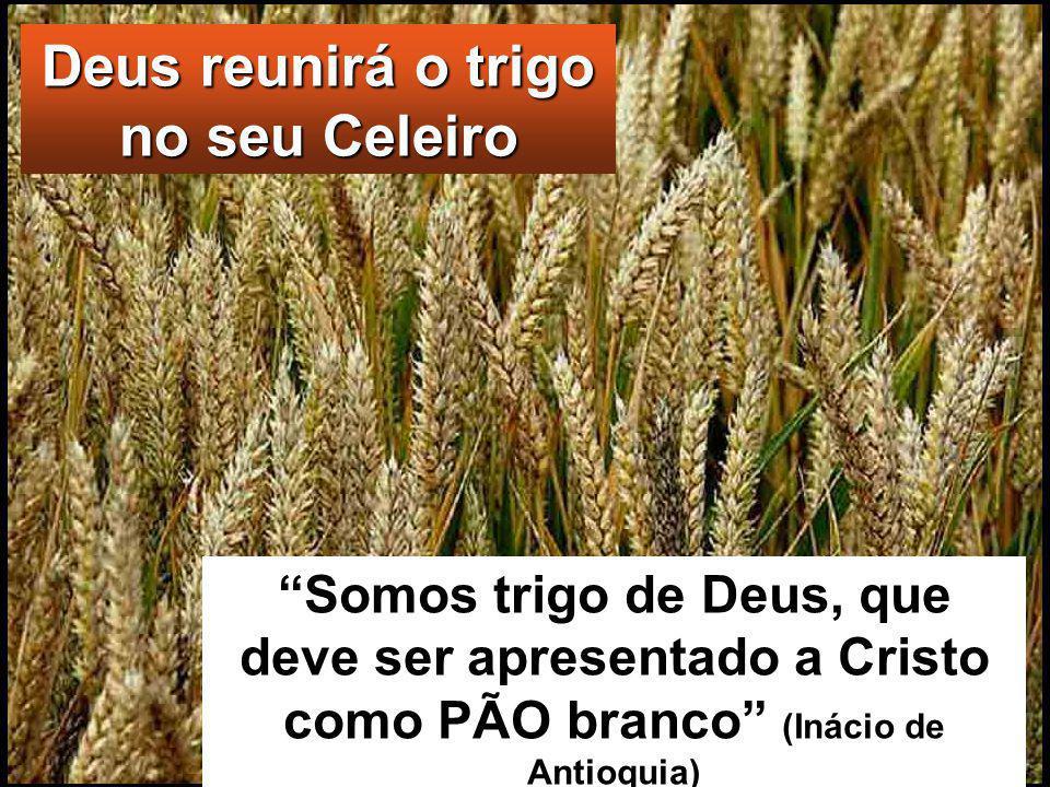 Tem na mão a pá para limpar a sua eira e recolherá o trigo no seu celeiro; a palha, porém, queimá-la-á num fogo que não se apaga». Assim, com estas e