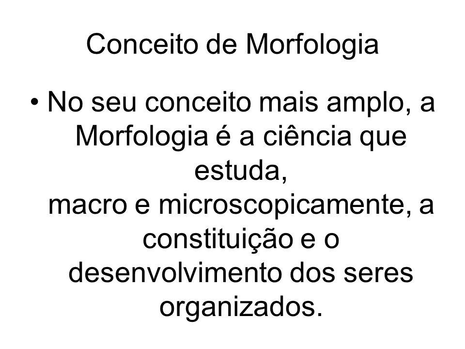 Conceito de Morfologia No seu conceito mais amplo, a Morfologia é a ciência que estuda, macro e microscopicamente, a constituição e o desenvolvimento