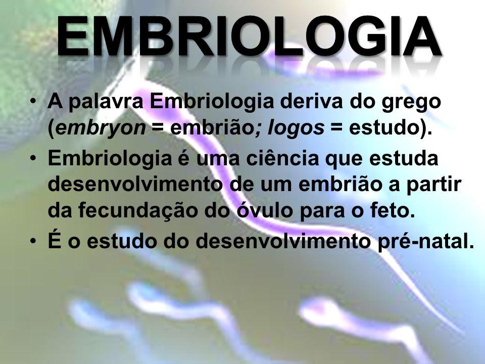 A palavra Embriologia deriva do grego (embryon = embrião; logos = estudo). Embriologia é uma ciência que estuda desenvolvimento de um embrião a partir