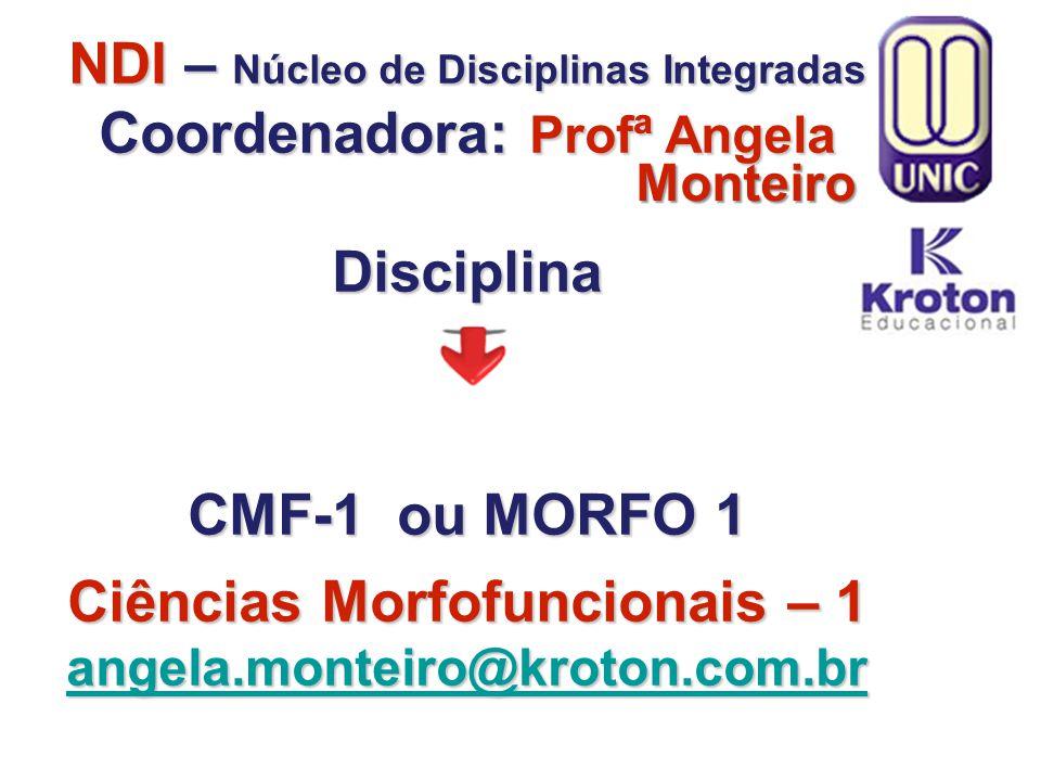 NDI – Núcleo de Disciplinas Integradas Coordenadora: Profª Angela Disciplina CMF-1 ou MORFO 1 Ciências Morfofuncionais – 1 angela.monteiro@kroton.com.