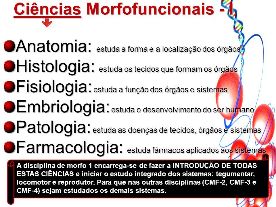 A disciplina de morfo 1 encarrega-se de fazer a INTRODUÇÃO DE TODAS ESTAS CIÊNCIAS e iniciar o estudo integrado dos sistemas: tegumentar, locomotor e