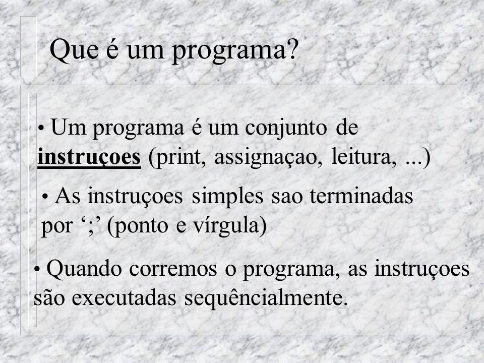 Que é um programa.