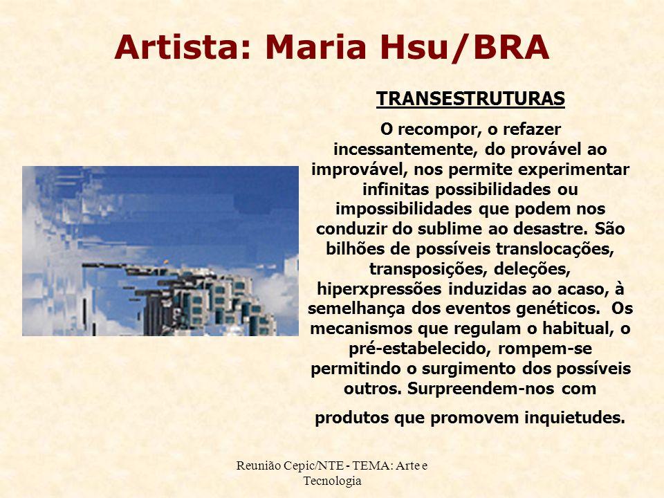 Reunião Cepic/NTE - TEMA: Arte e Tecnologia TRANSESTRUTURAS O recompor, o refazer incessantemente, do provável ao improvável, nos permite experimentar