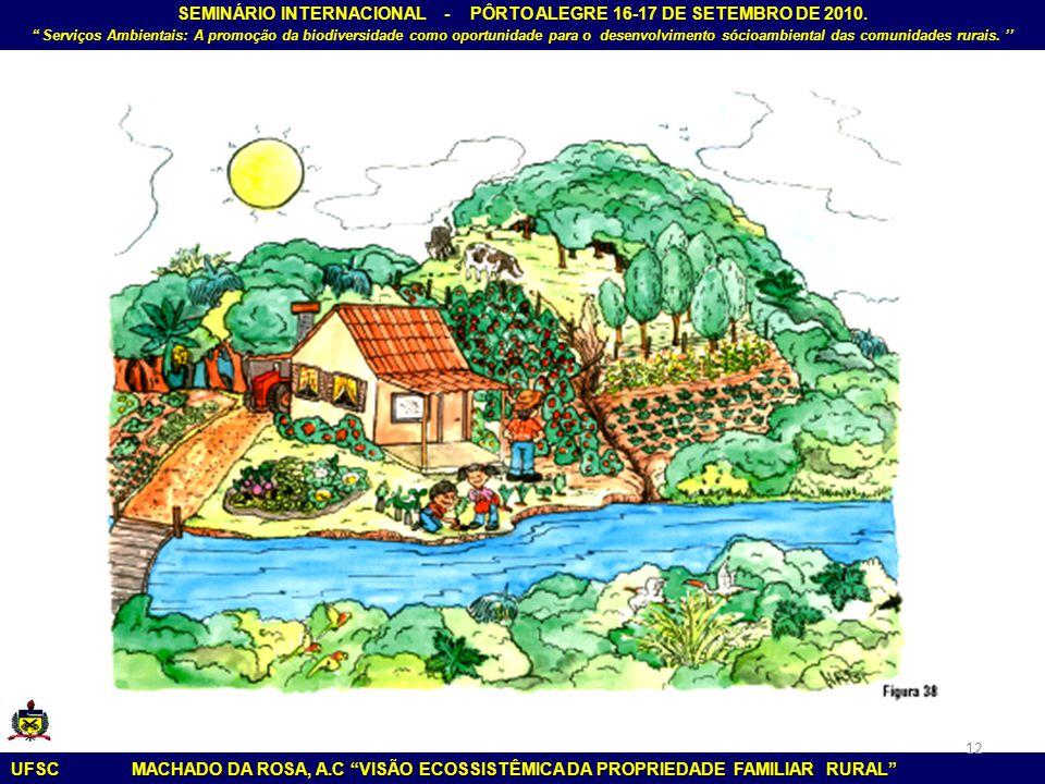 """SEMINÁRIO INTERNACIONAL - PÔRTO ALEGRE 16-17 DE SETEMBRO DE 2010. """" Serviços Ambientais: A promoção da biodiversidade como oportunidade para o desenvo"""