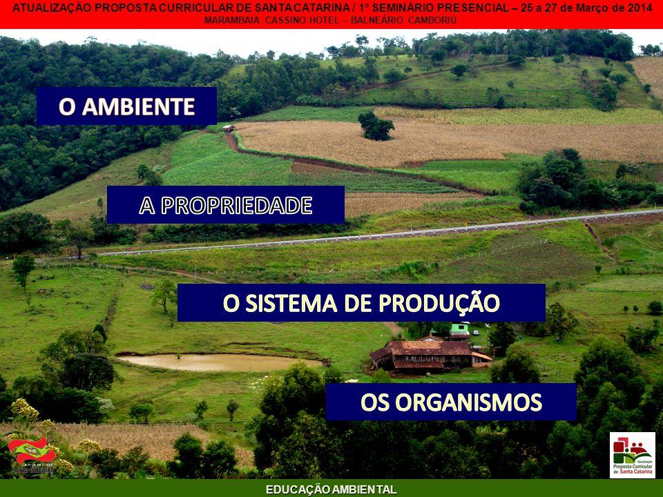 S O SEMINÁRIO INTERNACIONAL - PÔRTO ALEGRE 16-17 DE SETEMBRO DE 2010.
