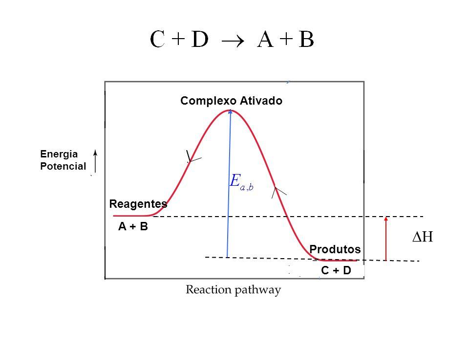 13 A + B C + D Energia Potencial Complexo Ativado Reagentes Produtos HH