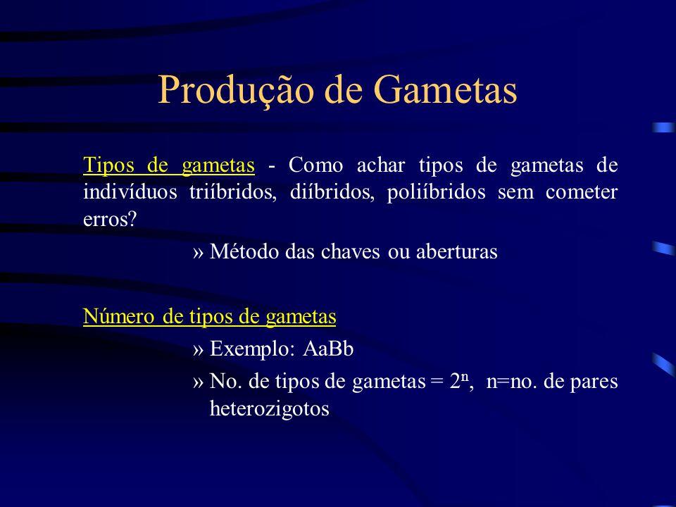 Produção de Gametas Tipos de gametas - Como achar tipos de gametas de indivíduos triíbridos, diíbridos, poliíbridos sem cometer erros? »Método das cha