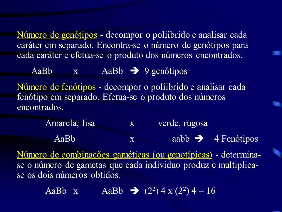 Número de genótipos - decompor o poliibrido e analisar cada caráter em separado. Encontra-se o número de genótipos para cada caráter e efetua-se o pro