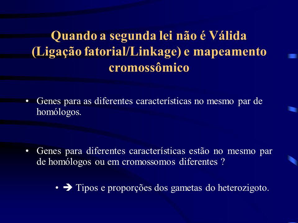 Quando a segunda lei não é Válida (Ligação fatorial/Linkage) e mapeamento cromossômico Genes para as diferentes características no mesmo par de homólogos.