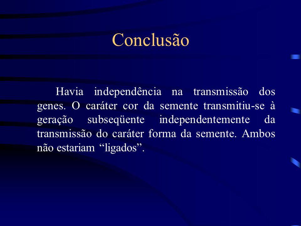 Conclusão Havia independência na transmissão dos genes.