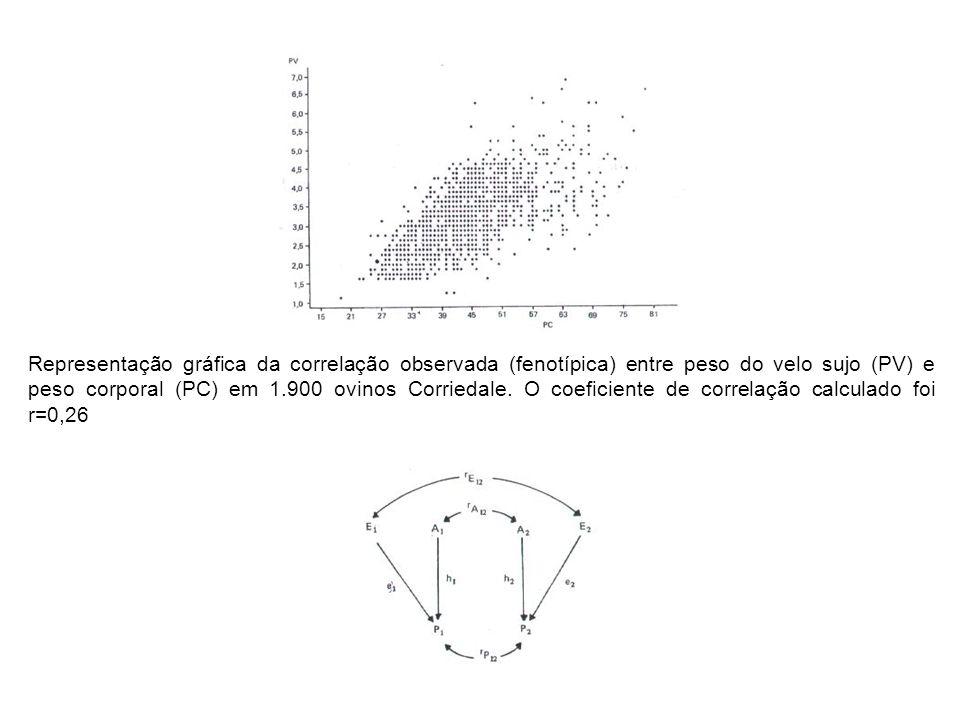 Representação gráfica da correlação observada (fenotípica) entre peso do velo sujo (PV) e peso corporal (PC) em 1.900 ovinos Corriedale.