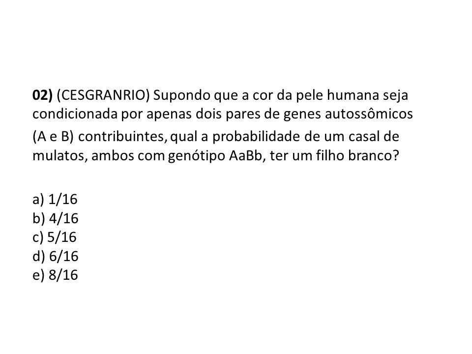 02) (CESGRANRIO) Supondo que a cor da pele humana seja condicionada por apenas dois pares de genes autossômicos (A e B) contribuintes, qual a probabil