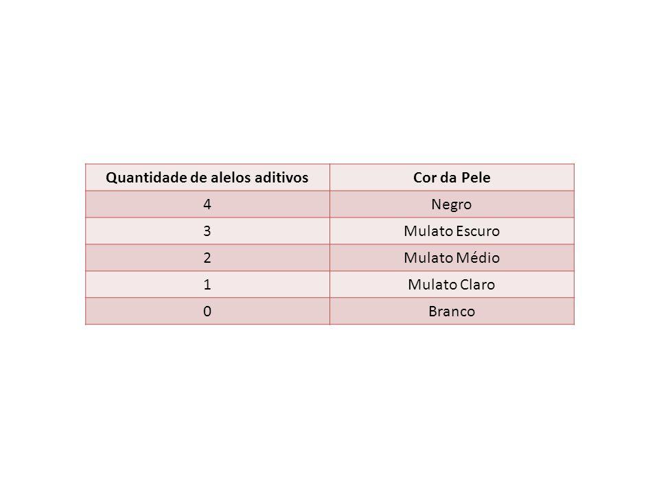 Quantidade de alelos aditivosCor da Pele 4Negro 3Mulato Escuro 2Mulato Médio 1Mulato Claro 0Branco