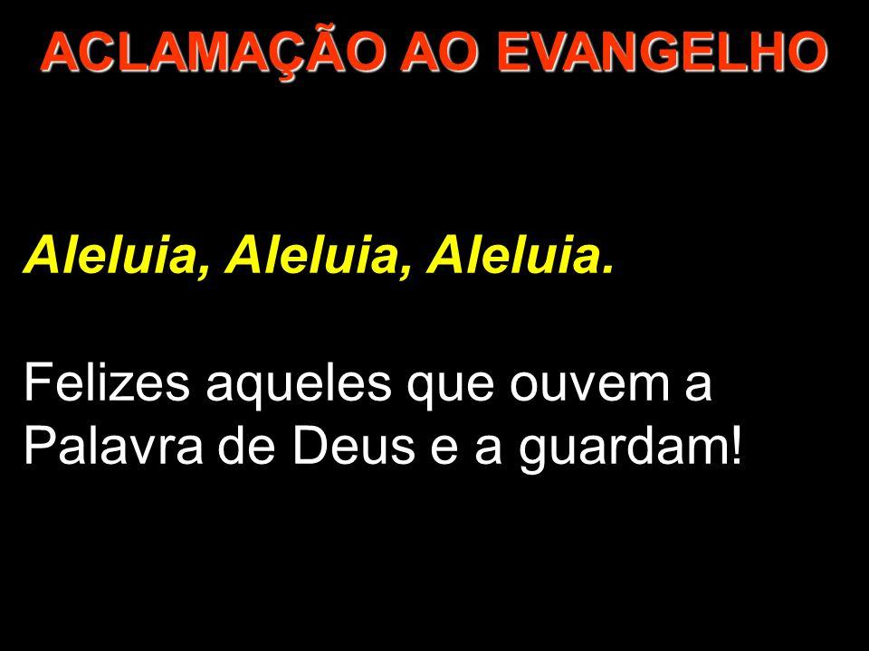 Aleluia, Aleluia, Aleluia. Felizes aqueles que ouvem a Palavra de Deus e a guardam! ACLAMAÇÃO AO EVANGELHO