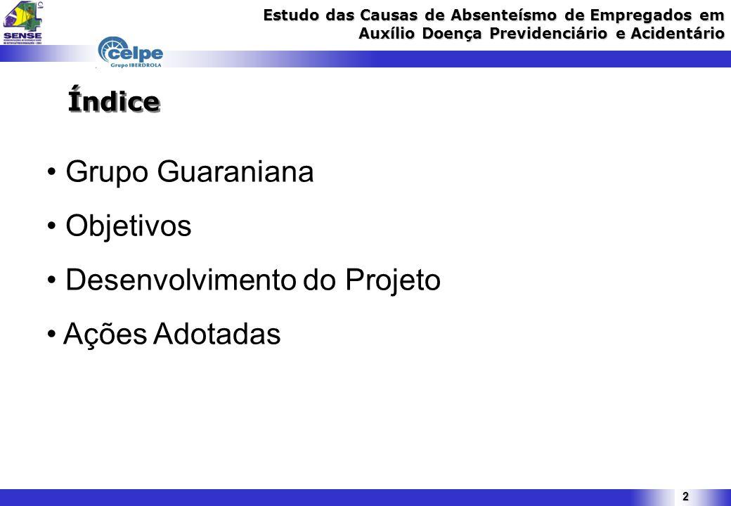 2 Índice Grupo Guaraniana Objetivos Desenvolvimento do Projeto Ações Adotadas
