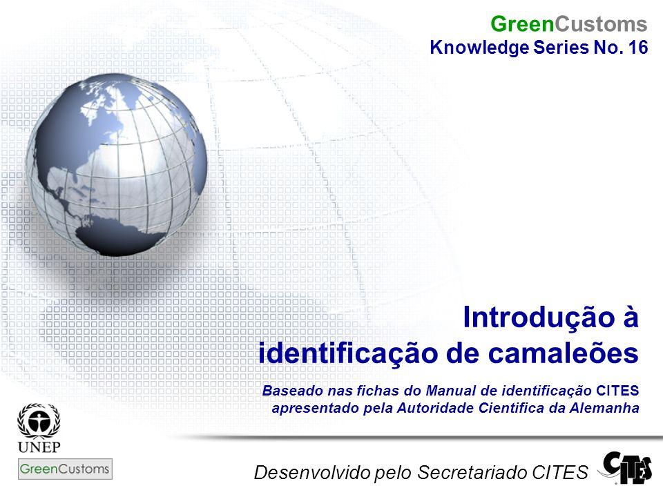 Introdução à identificação de camaleões Baseado nas fichas do Manual de identificação CITES apresentado pela Autoridade Cientifica da Alemanha Desenvo