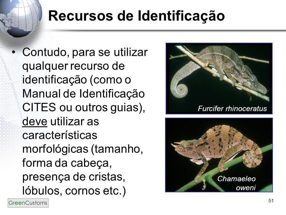 51 Recursos de Identificação Contudo, para se utilizar qualquer recurso de identificação (como o Manual de Identificação CITES ou outros guias), deve