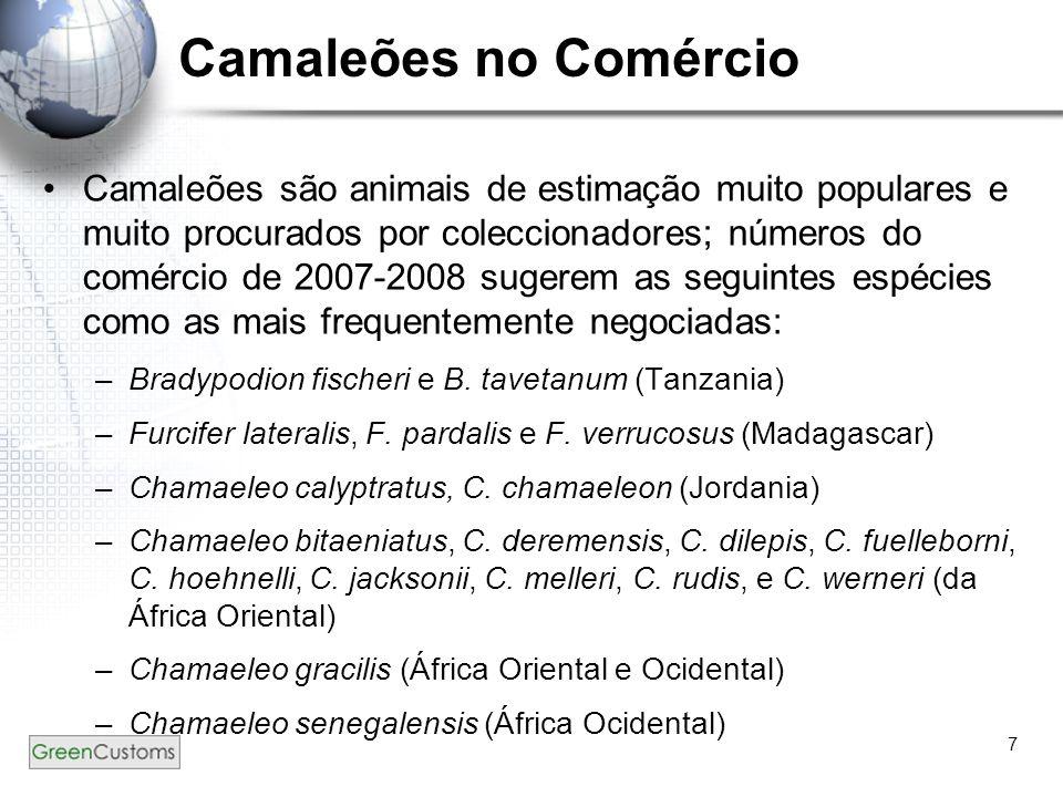 7 Camaleões no Comércio Camaleões são animais de estimação muito populares e muito procurados por coleccionadores; números do comércio de 2007-2008 su
