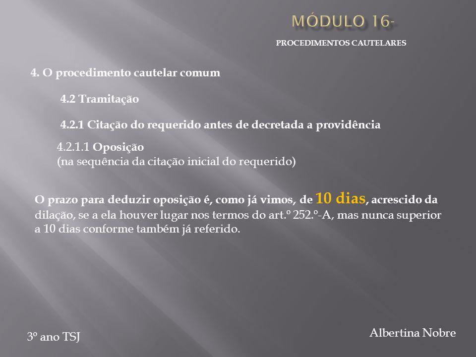 PROCEDIMENTOS CAUTELARES 3º ano TSJ Albertina Nobre 4.
