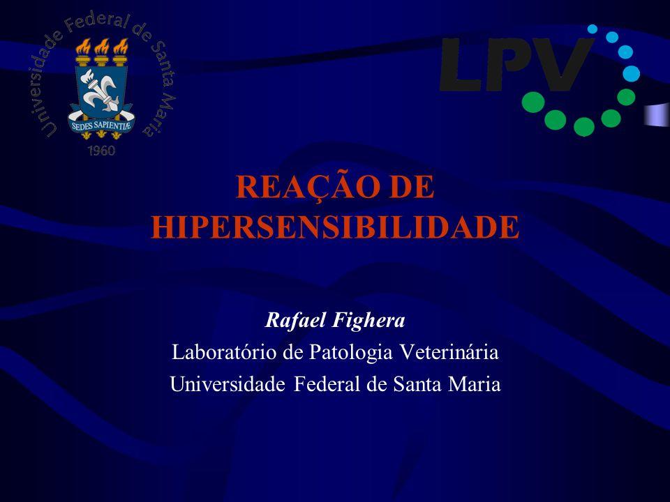 REAÇÃO DE HIPERSENSIBILIDADE Rafael Fighera Laboratório de Patologia Veterinária Universidade Federal de Santa Maria