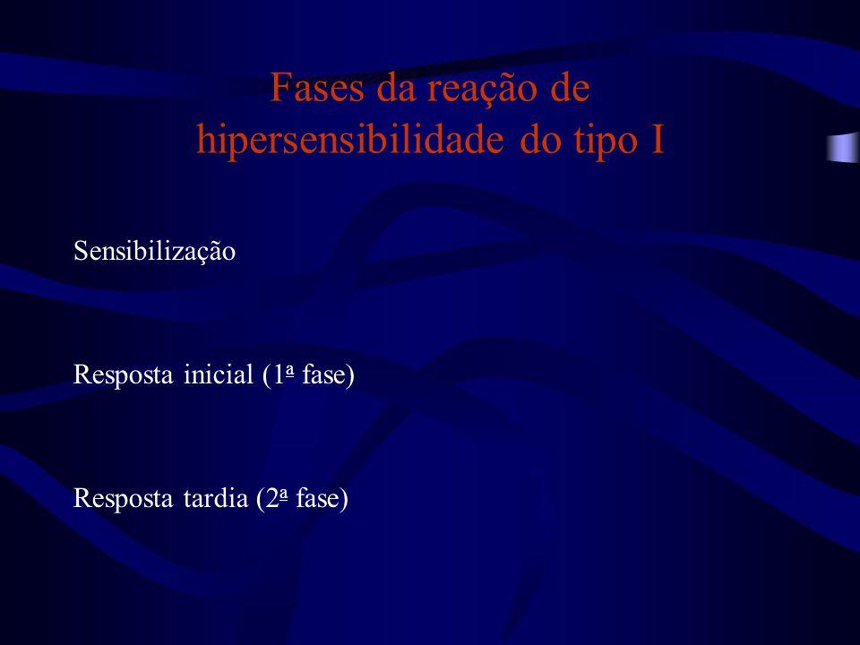 Fases da reação de hipersensibilidade do tipo I Sensibilização Resposta inicial (1 a fase) Resposta tardia (2 a fase)
