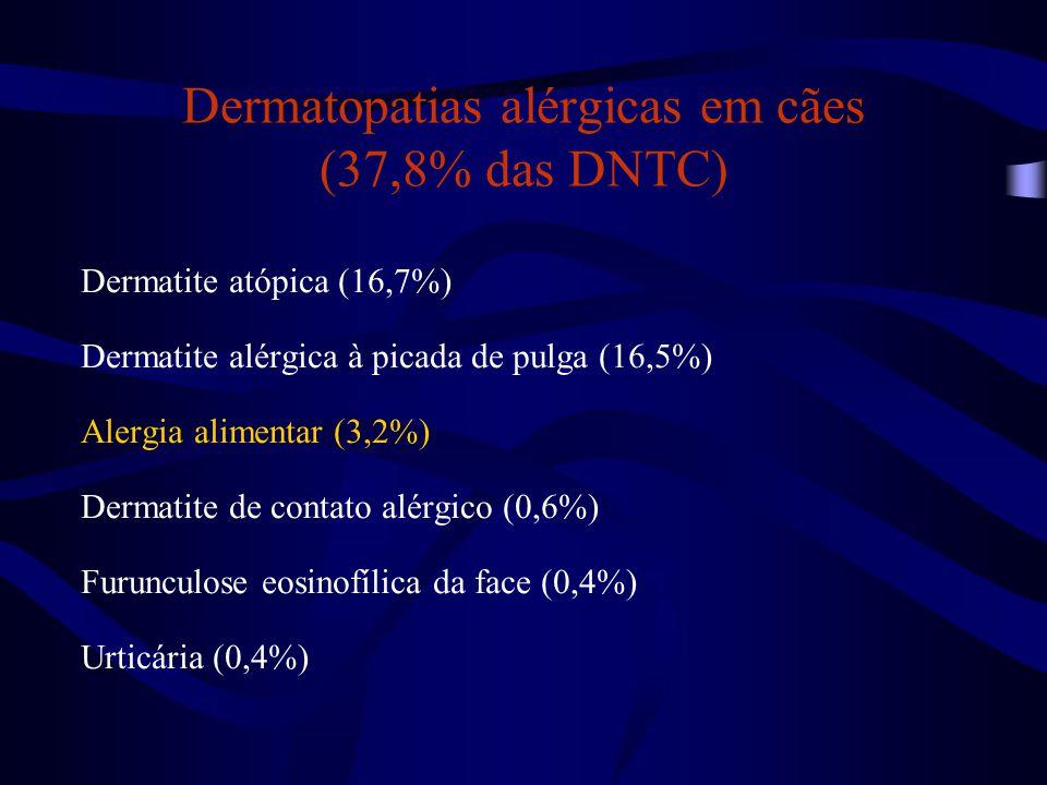 Dermatopatias alérgicas em cães (37,8% das DNTC) Dermatite atópica (16,7%) Dermatite alérgica à picada de pulga (16,5%) Alergia alimentar (3,2%) Derma