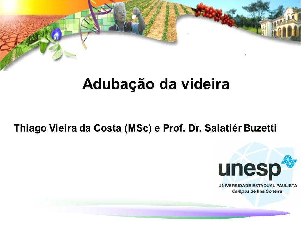 Adubação da videira Thiago Vieira da Costa (MSc) e Prof. Dr. Salatiér Buzetti