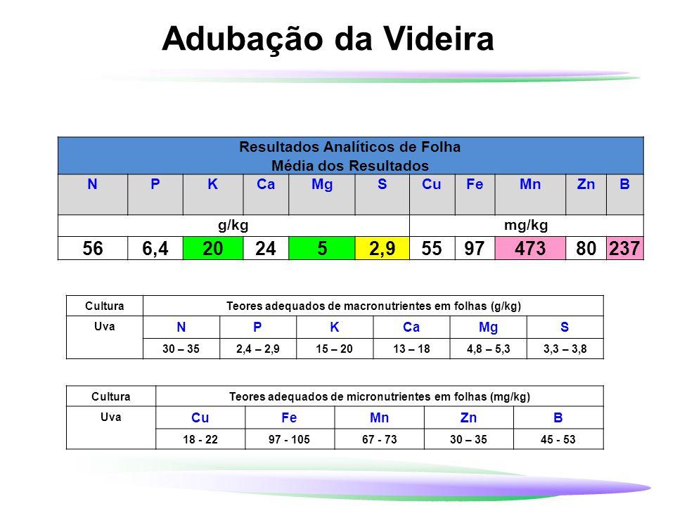 Adubação da Videira CulturaTeores adequados de macronutrientes em folhas (g/kg) Uva NPKCaMgS 30 – 352,4 – 2,915 – 2013 – 184,8 – 5,33,3 – 3,8 CulturaT