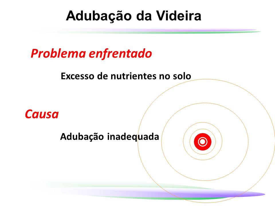 Adubação da Videira Problema enfrentado Excesso de nutrientes no solo Causa Adubação inadequada