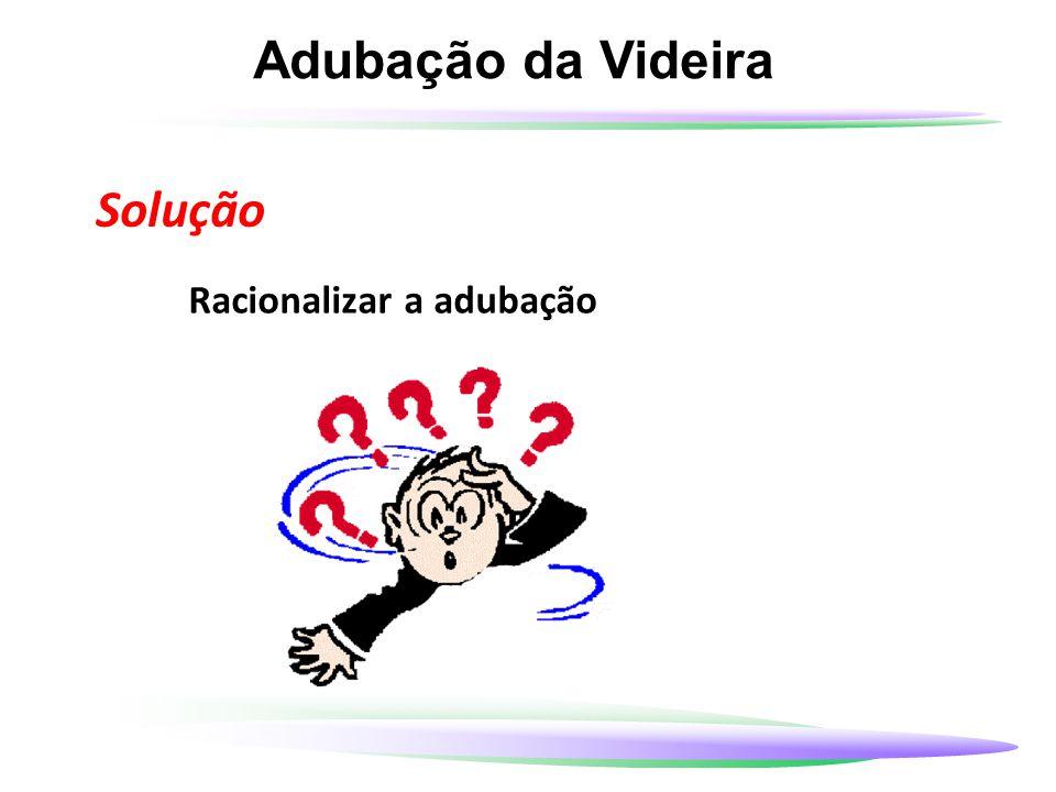 Adubação da Videira Solução Racionalizar a adubação