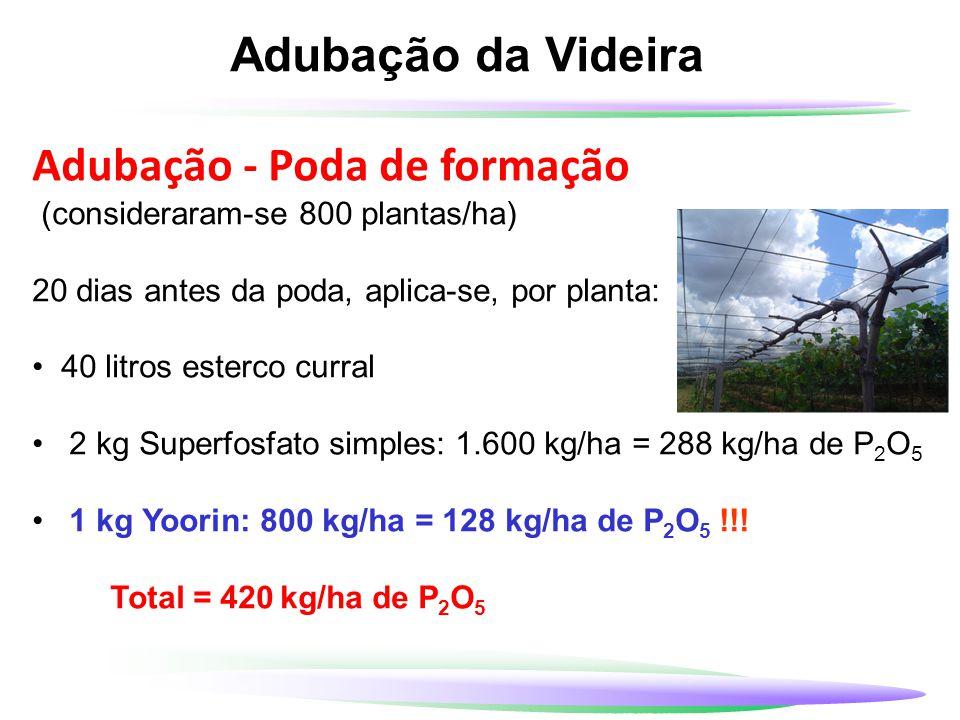 Adubação da Videira Adubação - Poda de formação (consideraram-se 800 plantas/ha) 20 dias antes da poda, aplica-se, por planta: 40 litros esterco curra
