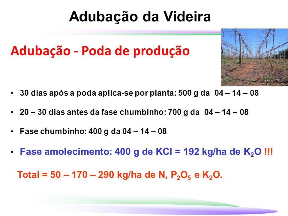 Adubação da Videira Adubação - Poda de produção 30 dias após a poda aplica-se por planta: 500 g da 04 – 14 – 08 20 – 30 dias antes da fase chumbinho: