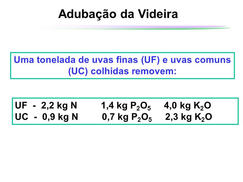 Adubação da Videira Uma tonelada de uvas finas (UF) e uvas comuns (UC) colhidas removem: UF - 2,2 kg N 1,4 kg P 2 O 5 4,0 kg K 2 O UC - 0,9 kg N 0,7 k