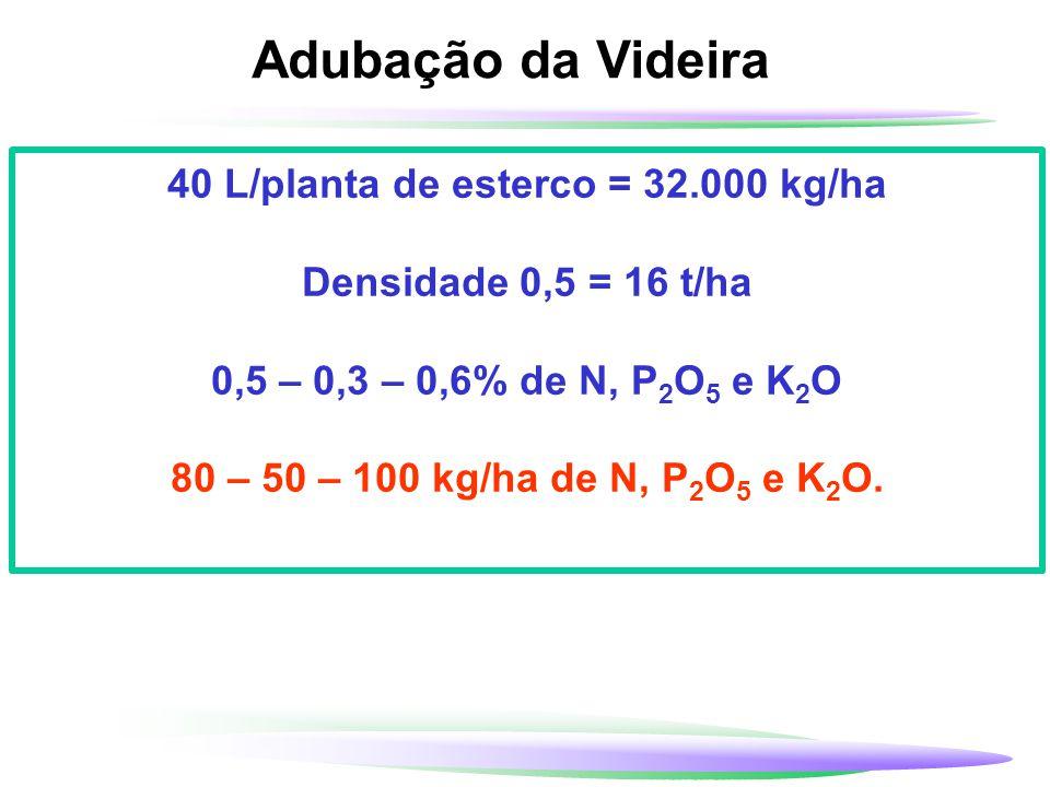 Adubação da Videira 40 L/planta de esterco = 32.000 kg/ha Densidade 0,5 = 16 t/ha 0,5 – 0,3 – 0,6% de N, P 2 O 5 e K 2 O 80 – 50 – 100 kg/ha de N, P 2