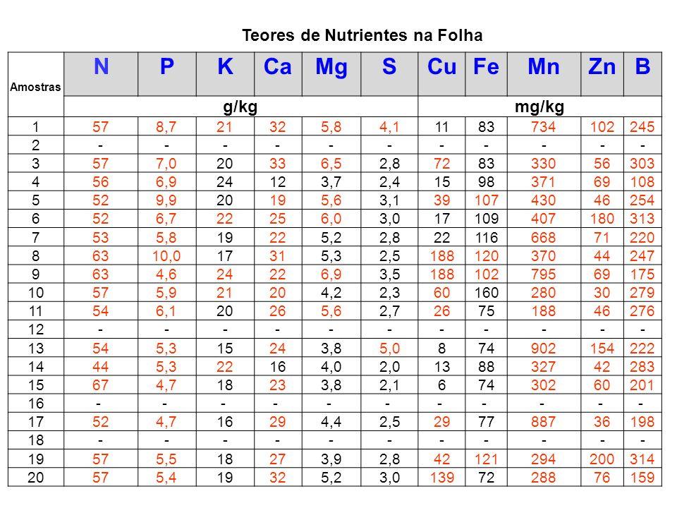 Teores de Nutrientes na Folha NPKCaMgSCuFeMnZnB Amostras g/kgmg/kg 1578,721325,84,11183734102245 2----------- 3577,020336,52,8728333056303 4566,924123