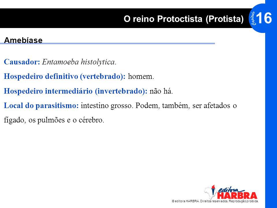 © editora HARBRA. Direitos reservados. Reprodução proibida. 16 O reino Protoctista (Protista) Amebíase Causador: Entamoeba histolytica. Hospedeiro def