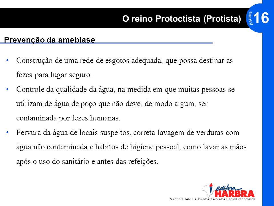 © editora HARBRA. Direitos reservados. Reprodução proibida. 16 O reino Protoctista (Protista) Construção de uma rede de esgotos adequada, que possa de
