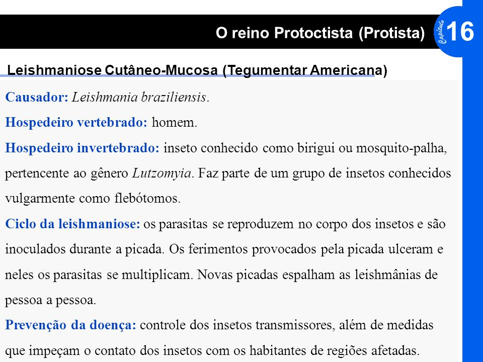© editora HARBRA. Direitos reservados. Reprodução proibida. 16 O reino Protoctista (Protista) Leishmaniose Cutâneo-Mucosa (Tegumentar Americana) Causa