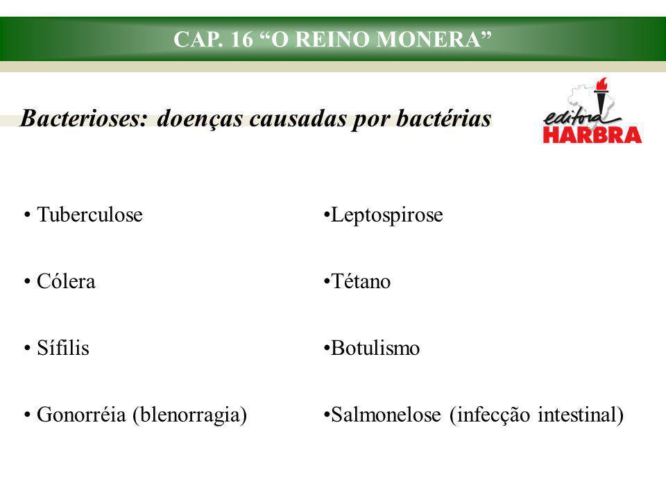 "CAP. 16 ""O REINO MONERA"" Bacterioses: doenças causadas por bactérias Tuberculose Cólera Sífilis Gonorréia (blenorragia) Leptospirose Tétano Botulismo"