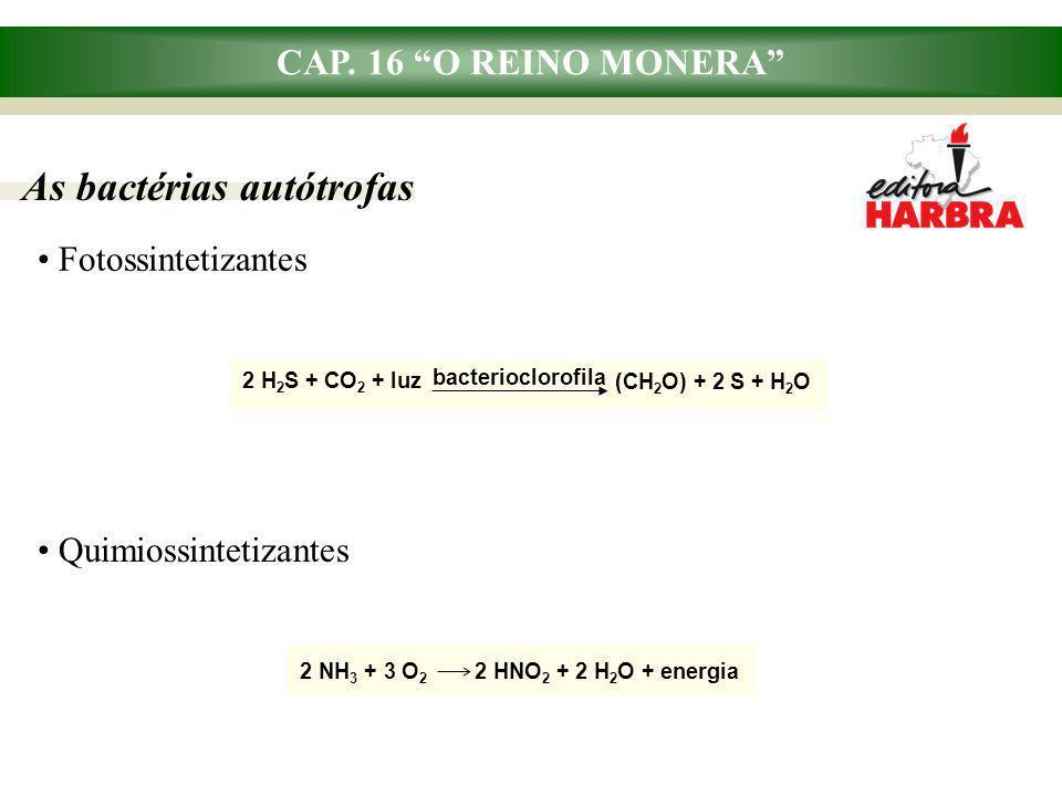 """CAP. 16 """"O REINO MONERA"""" Fotossintetizantes As bactérias autótrofas Quimiossintetizantes 2 H 2 S + CO 2 + luz bacterioclorofila (CH 2 O) + 2 S + H 2 O"""