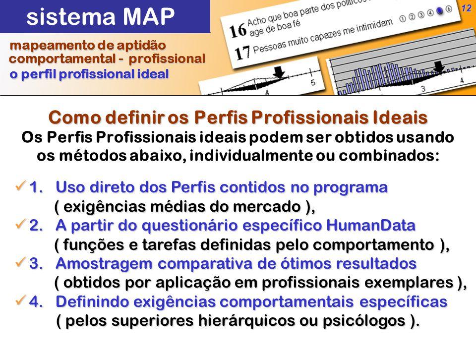 12 Como definir os Perfis Profissionais Ideais Como definir os Perfis Profissionais Ideais Os Perfis Profissionais ideais podem ser obtidos usando os métodos abaixo, individualmente ou combinados: 1.