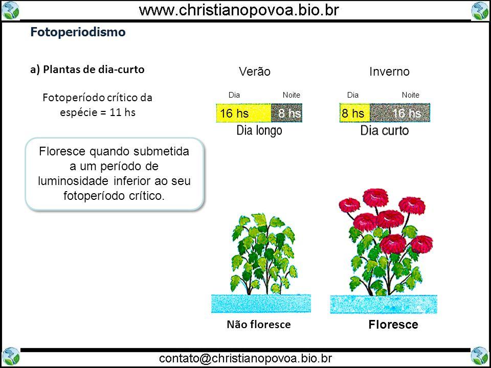 Fotoperiodismo a) Plantas de dia-curto Fotoperíodo crítico da espécie = 11 hs Floresce quando submetida a um período de luminosidade inferior ao seu f