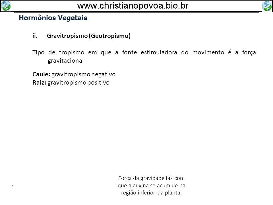Hormônios Vegetais ii. Gravitropismo (Geotropismo) Tipo de tropismo em que a fonte estimuladora do movimento é a força gravitacional Caule: gravitropi