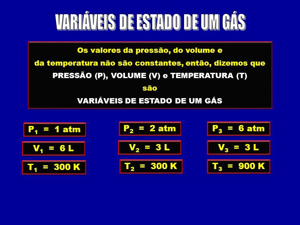 Os valores da pressão, do volume e da temperatura não são constantes, então, dizemos que PRESSÃO (P), VOLUME (V) e TEMPERATURA (T) são VARIÁVEIS DE ESTADO DE UM GÁS Os valores da pressão, do volume e da temperatura não são constantes, então, dizemos que PRESSÃO (P), VOLUME (V) e TEMPERATURA (T) são VARIÁVEIS DE ESTADO DE UM GÁS P 1 = 1 atm V 1 = 6 L T 1 = 300 K P 2 = 2 atm V 2 = 3 L T 2 = 300 K P 3 = 6 atm V 3 = 3 L T 3 = 900 K
