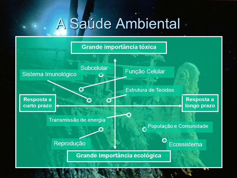 Grande importância tóxica Grande importância ecológica Resposta a longo prazo Resposta a curto prazo Reprodução Estrutura de Tecidos Sistema Imunológico Função Celular Subcelular Transmissão de energia População e Comunidade Ecossistema A Saúde Ambiental