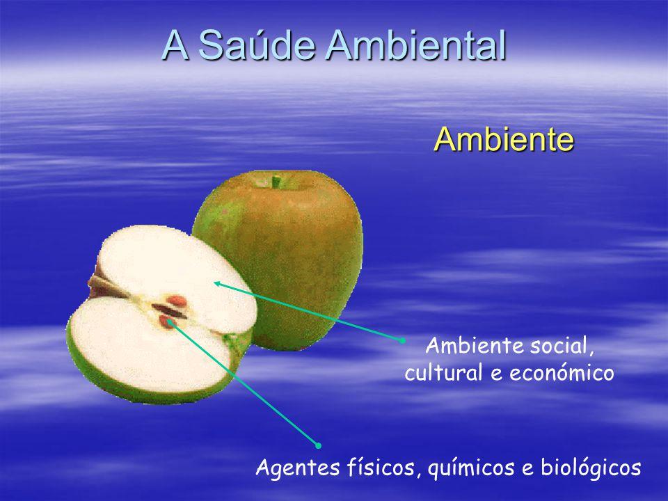 Ambiente Ambiente social, cultural e económico Agentes físicos, químicos e biológicos A Saúde Ambiental