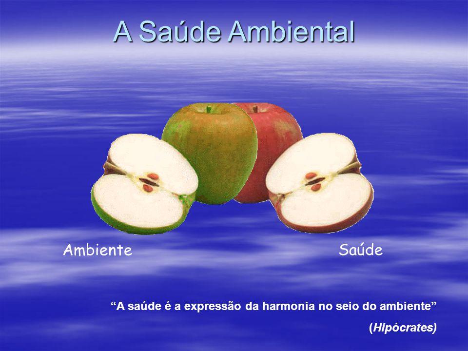 Ambiente Saúde A saúde é a expressão da harmonia no seio do ambiente (Hipócrates) A Saúde Ambiental